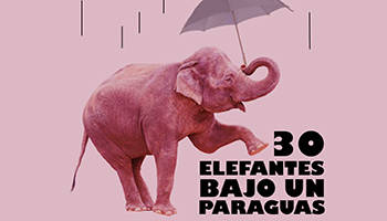 30 elefantes bajo un paraguas