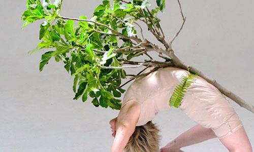 Abierta la convocatoria de la segunda edición del Festival Internacional de Danza Biónica