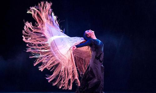 El Auditorio Baluarte, escenario principal de la quinta edición del Festival Flamenco On Fire