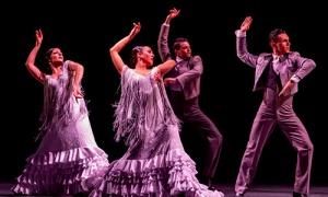 Abierta la convocatoria para conformar el catálogo de la Red Andaluza de Teatros Públicos 2020