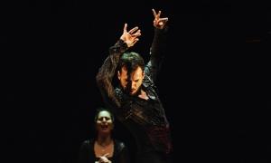 El Teatro Fernán Gómez de Madrid acoge la tercera edición del festival Flamenco Madrid