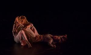Abrimos la convocatoria para la presentación de propuestas artísticas al circuito 'Danza a Escena 2019'