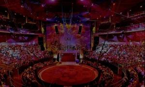 La Red celebra su segunda Asamblea Anual el 8 de  mayo en el Teatro Circo Price de Madrid