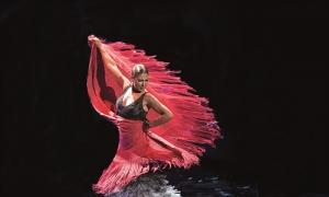 Sexta edición del festival 'Flamenco On Fire': Pamplona ensalza su raíz flamenca