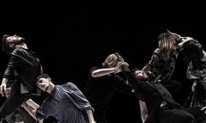 Sharon Fridman, cabeza de cartel del festival Dansa València