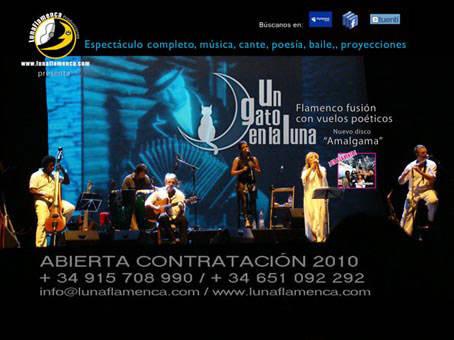 Un Gato en la Luna - Flamenco fusión con vuelos poéticos  - nuevo disco Amalgama